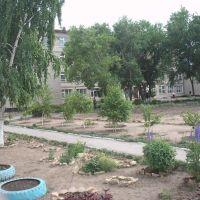 Алтайский колледж информационных технологий, Волчиха