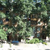 Вид с балкона дома по ул. Миронова, Горняк