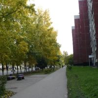 Осень, Заринск