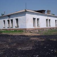Ветлечебница3, Заринск