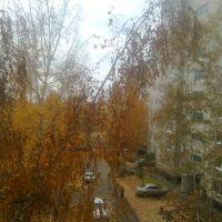 Осень в Заринске, Заринск