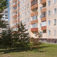 Улица 40 лет Победы, Заринск