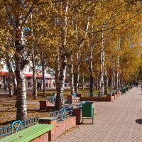 Улица Металлургов, Заринск