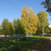Школа №3, Заринск