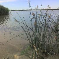 Ключевское озеро, Ключи