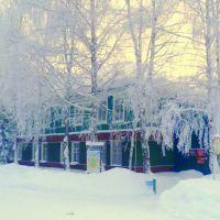 Село Красногорское,библиотека, Красногорское