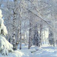 Парк., Красногорское