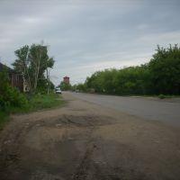Улица Целинная, Кулунда