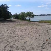 Старый добрый пляж, Мамонтово