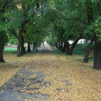 В городском парке, Новоалтайск
