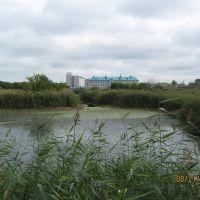 Здания по другую сторону пруда, Новоалтайск