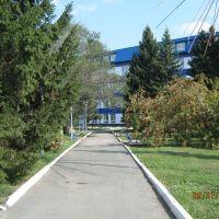 Аллея перед заводом, Новоалтайск