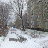 Улица Анатолия (первый снег), Новоалтайск