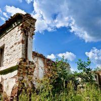 Развалины Демидовского Сереброплавильного завода (автор проекта Ползунов И.И.), Павловск