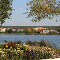 На берегу пруда, Павловск