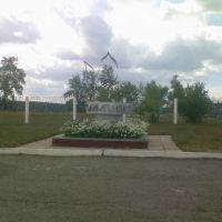 Стадион, Павловск