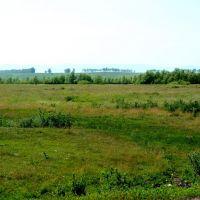 Green Hills near Red Eagles, Петропавловское