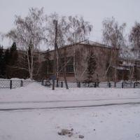 Средняя школа зимой, Ребриха