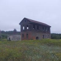 Бывшая мельница, Ребриха
