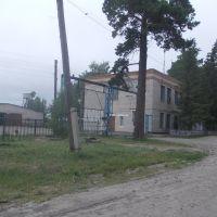 Ребрихинское автотранспортное предприятие, Ребриха