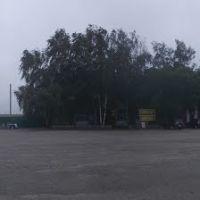 Ребриха - площадь перед центральным универмагом, Ребриха