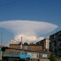 Призрак аппокалипсиса, Рубцовск