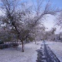 первый снег, Славгород