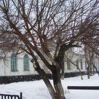 весенний снег, Славгород