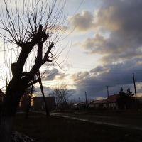 холодная весна, Славгород
