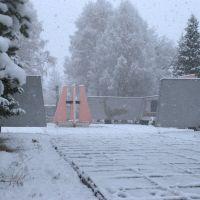 Мемориал славы. Первый снег., Солонешное