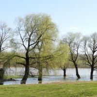 Spring flood, Тальменка