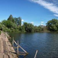 озеро Хомутинка  (Lake Homutinka) 27.06.2010, Тальменка