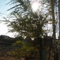 Солнце и ветер, Тальменка