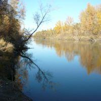 Протока в усть-чарышской пристани, Усть-Чарышская Пристань