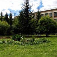 Хабарская средняя школа №1. Школьный сад, Хабары