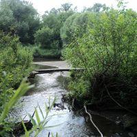 Мост через Яминку, Целинное