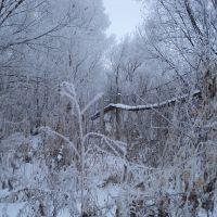 Мост к парку от ул. Калинина, Целинное