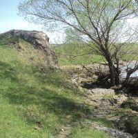 На берегу реки Яминка, Целинное