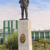 Село Целинное (Tselinnoe). Памятник Владимиру Ильичу Ульянову (Ленину)., Целинное