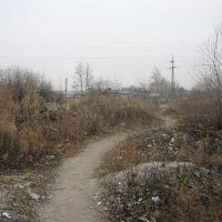 Тропа к улице Мухина, Благовещенск (Амурская обл.)