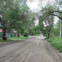 улица Новая под сенью деревьев, Благовещенск (Амурская обл.)