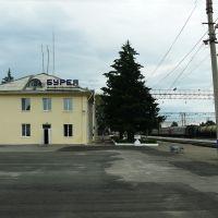 Станция Бурея, Бурея