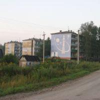 дома в поселке (buildings in village), Возжаевка