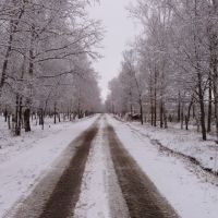 зимняя дорога (winter road), Возжаевка