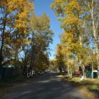 Ekaterinoslavka (2012-09) - Side Road, Екатеринославка
