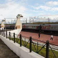 Поезд №43  Хабаровск-Москва., Ерофей Павлович