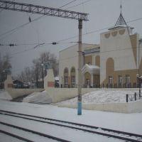 Erofey Pavlovich railway station, Ерофей Павлович