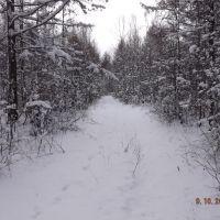 first snow, Ерофей Павлович