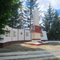 стелла, Завитинск