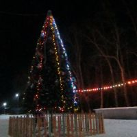 новогодняя ёлка на площади, Завитинск